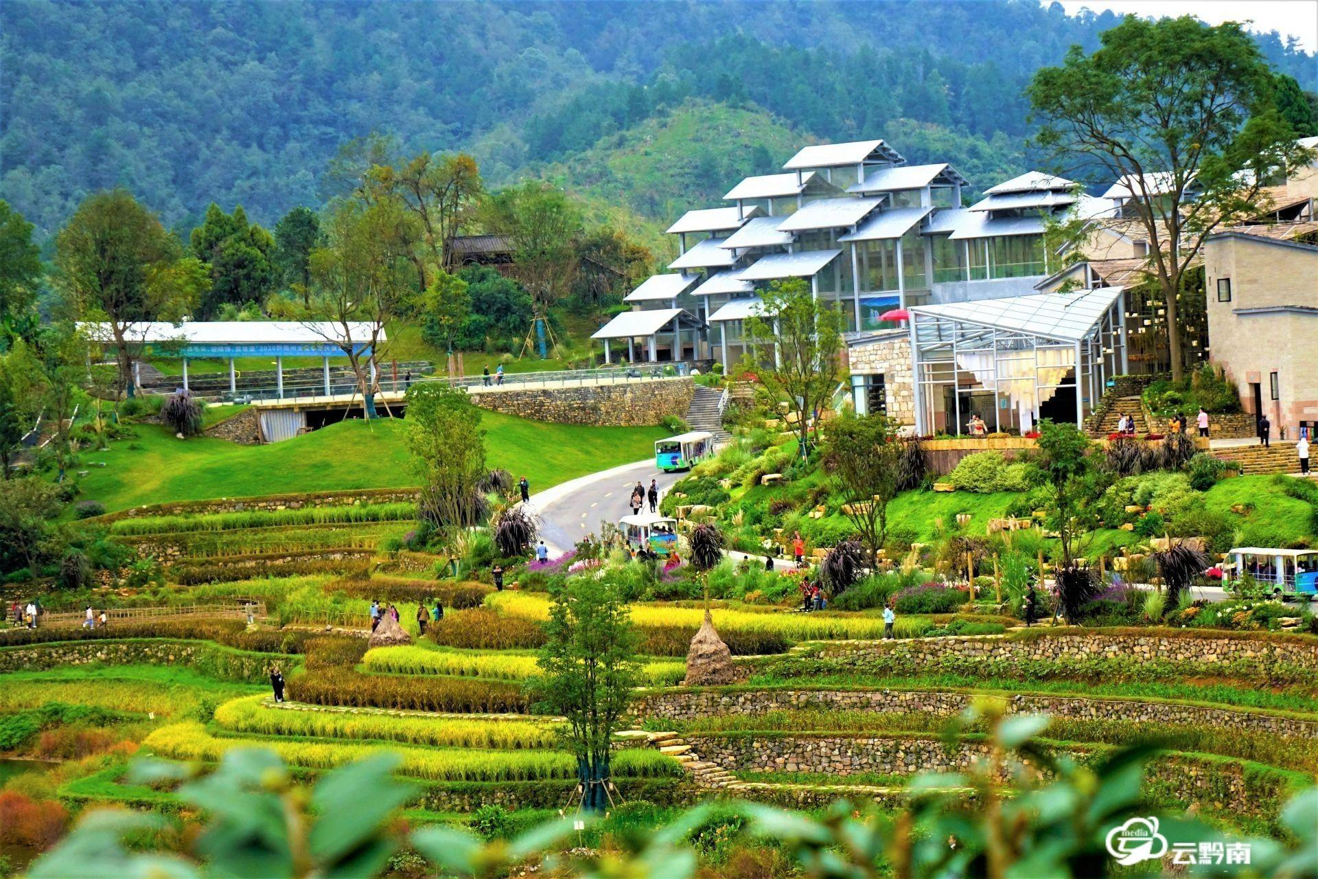 国庆假日的绿博园:秋色平分画卷天成