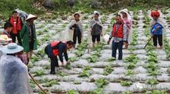 惠水:強化黨建引領  助力脫貧攻堅