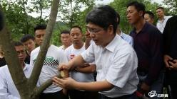 長順:強化技術培訓 助推核桃、刺梨產業發展