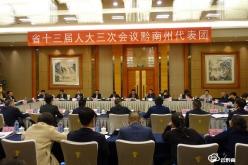 黔南代表团分组审议《政府工作报告》