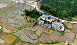 """为农村集体经济""""补钙"""" ——三都县农民合作社""""村社合一""""发展见闻"""