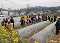 平塘平舟:技术培训助力春耕备耕