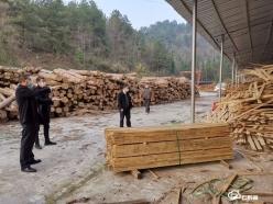 【把時間搶回來 把損失補回來】平塘農商銀行為木材加工廠生產解困境