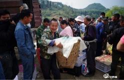 贵定县长江村:鸭鹅同上阵助增收 持续巩固脱贫成效