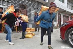【把时间抢回来 把损失补回来】龙里县团结村:复合肥种子免费发 助力群众春耕生产