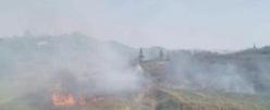 刑拘!貴州 2 男子上墳燒紙引發山火,百名消防員撲救 7 小時