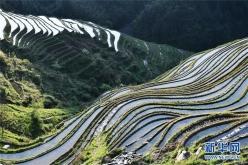贵州从江:大山深处梯田美