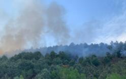 鏖战68小时,四川西昌森林火灾明火被扑灭