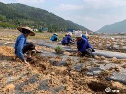 绿色品牌 生态致富——平塘农商银行助推掌布镇发展绿色产业助力脱贫攻坚