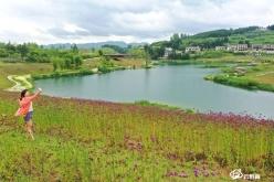甕安草塘: 荒坡變生態公園迎客來