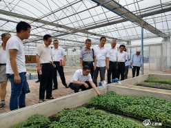 人民银行福泉市支行党建引领助力农业产业振兴
