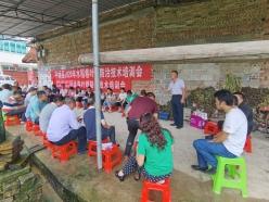 平塘:送科技下鄉  助力水稻豐產