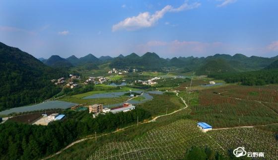 长顺凤凰坝:苹果红了 葡萄熟了 游客来了