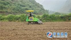 目标10万亩  罗甸抢晴天战雨天推进秋冬蔬菜种植
