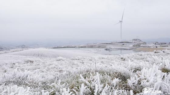 龙里草原雪景美如画