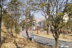 都匀:公园景点环绕  城市生活更美好