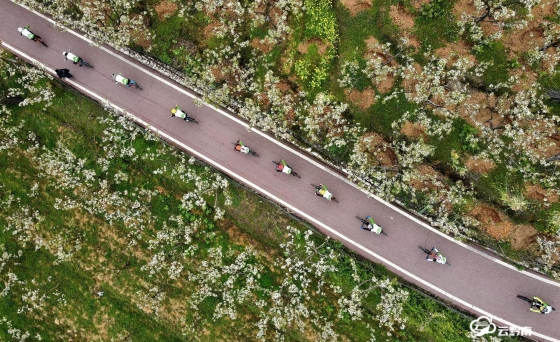 福泉市双谷村:骑行花海间