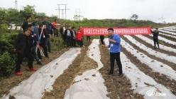 福泉:技能培训到田间   科学种植促增收