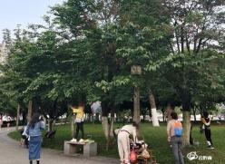 公园果树果实莫采摘,倡导文明游园新气象!