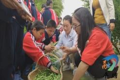 平塘特校:加强学生劳动教育  提高生存技能