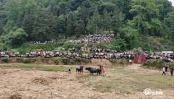 三都县姑挂村唱响民族特色促进乡村旅游发展