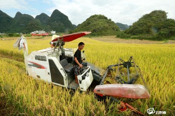 平塘:农机进山区 助力秋收忙