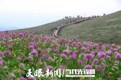"""快来!贵州省长李炳军邀请大家到""""公园省""""做客"""