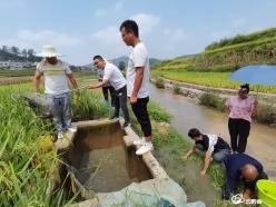 瓮安县深溪村稻田养鱼绘就庭院经济新景色